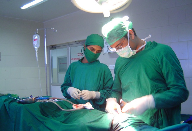 Пересадка внутренних органов