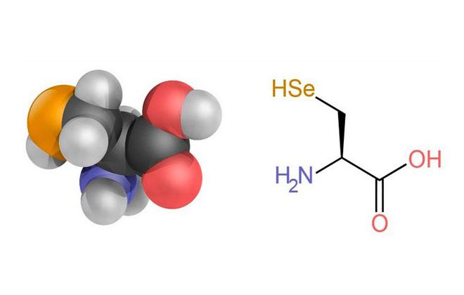 Аминокислота формула