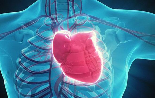 Закупорка коронарных артерий
