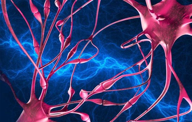 Повышенная активность нервной системы