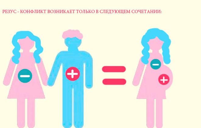 Резус-конфликт у мужчины и женщины