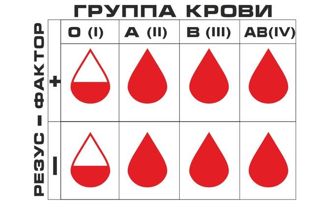 Резус крови в таблице