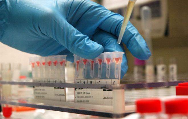 Тест ДНК на отцовство
