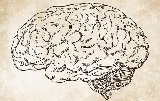Восстановление мозга