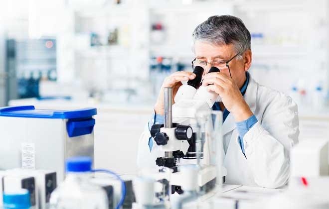 Исследовать кровь под микроскопом