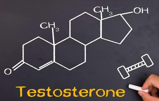 Свободный тестостерон у женщин и мужчин