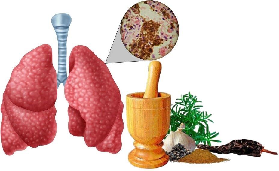 Народные средства от туберкулеза