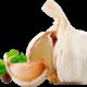 Можно ли кушать чеснок при панкреатите или нет