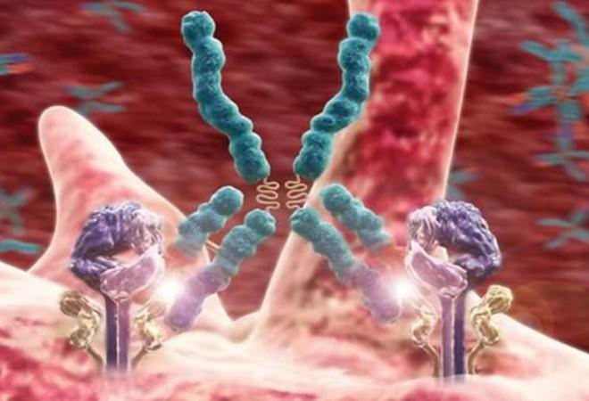 Что такое стеатоз