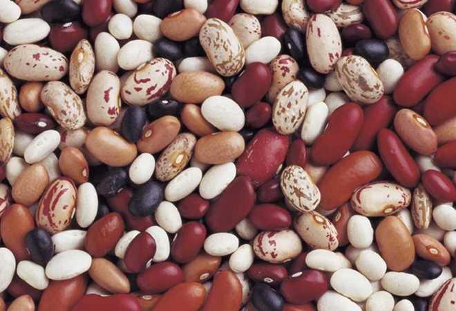 Фасоль при панкреатите: горох, можно ли есть, стручковую