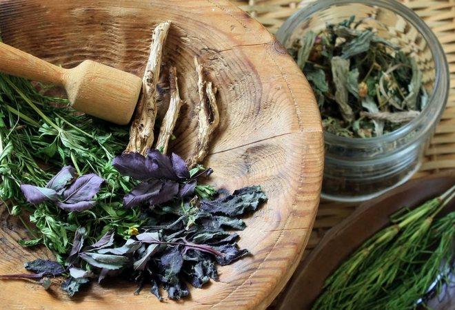 Травы для поджелудочной железы: при панкреатите, ромашка, травяной сбор, иван чай