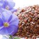 Как принимать семя льна при панкреатите поджелудочной железы