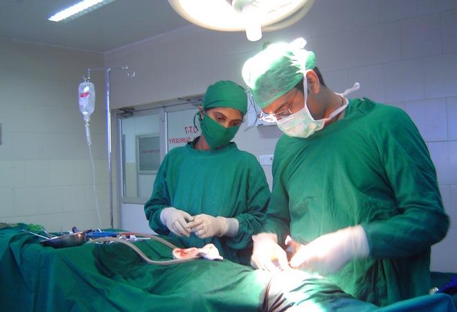 Пересадка поджелудочной железы: трудности, прогнозы, стоимость, показания, запреты