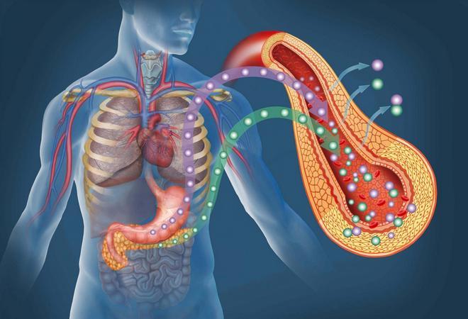 Недостаточность поджелудочной железы – расписываем по порядку. Недостаточность ферментов поджелудочной железы