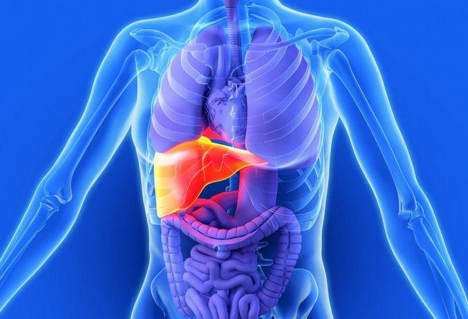 Жировая инфильтрация поджелудочная железа и печень диета thumbnail