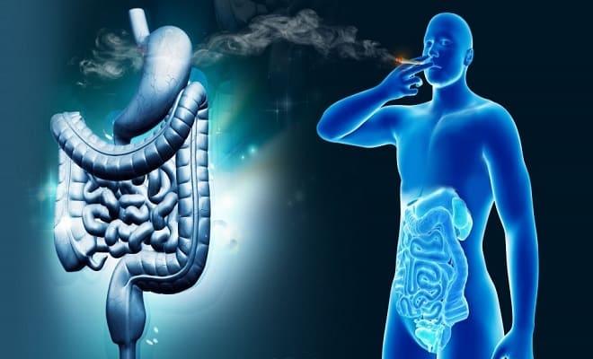 Можно ли курить при гастрите: электронные сигареты, кальян, никотин, смолы