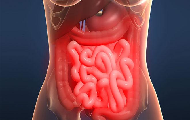 Проблемы кишечника