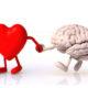 Чем отличается инсульт головного мозга от инфаркта и какие первые признаки у женщин (мужчин)