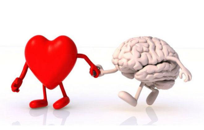 insulter i infarkt - Infarctus cérébral_1