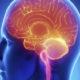 Последствия инсульта мозжечка головного мозга и прогноз продолжительности жизни