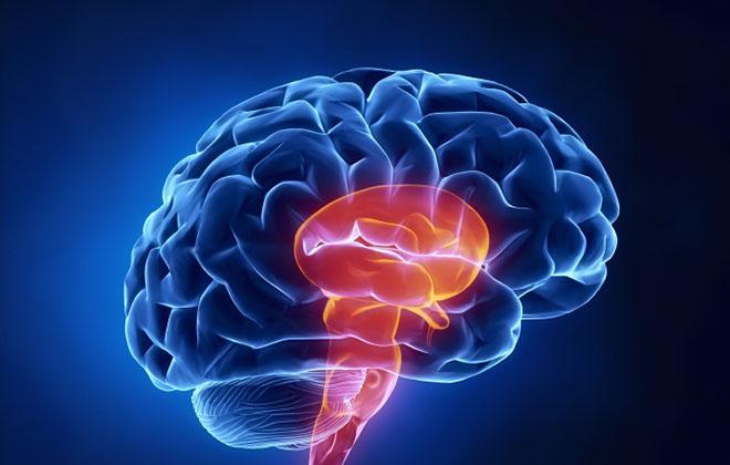 Ишемический инсульт ствола головного мозга