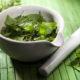 Список лекарственных трав (растений) какие повышают низкое давление при гипотонии