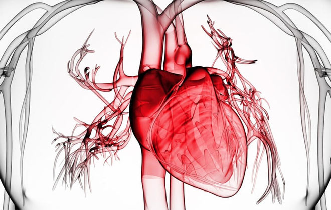 vnezapnyy infarkt - Алгоритам за прва помош за лице со миокарден инфаркт дома