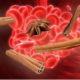 Рецепты корицы для снижения высокого давления при гипертонии