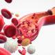 Классификация (виды) анемии у взрослых