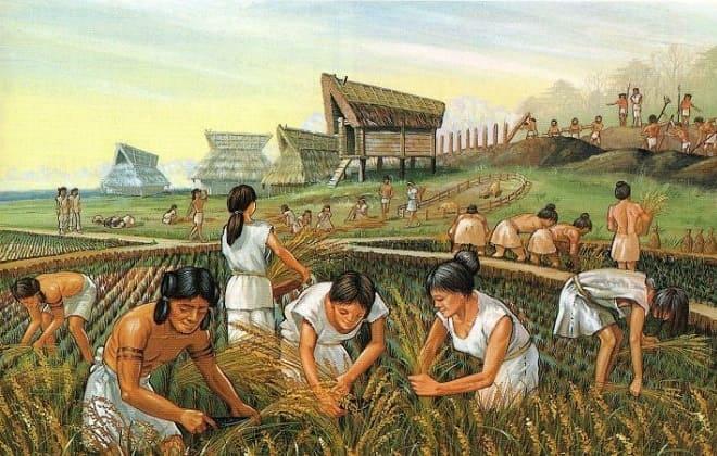 Древняя земледеятельность