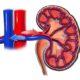 Как лечится синдром почечной артериальной (реноваскулярной) гипертензии (гипертонии) и симптомы болезни