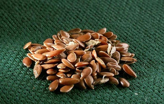 Семена льна от посинений