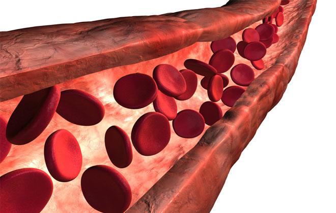 Железо в крови