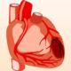 Как лечить умеренную гипоксию миокарда (кислородное голодание сердца) и какие у нее симптомы