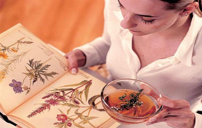 Сосудорасширяющие народные средства: настойки трав для расширения сосудов головного мозга, аневризма, лечение, лекарственные растения