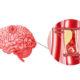 Как лечить цереброваскулярную болезнь сосудов головного мозга и ее симптомы
