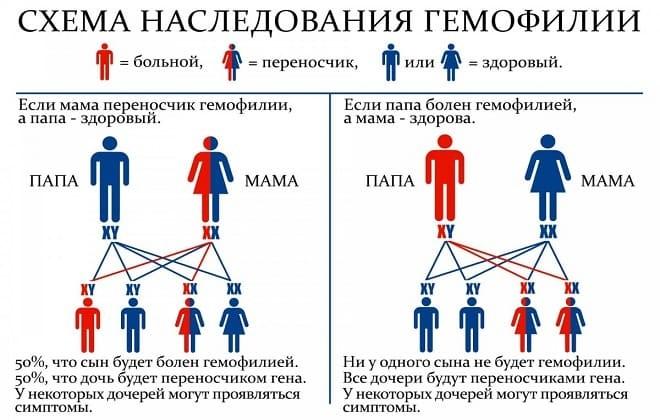 Схема наследования гемофилии у детей