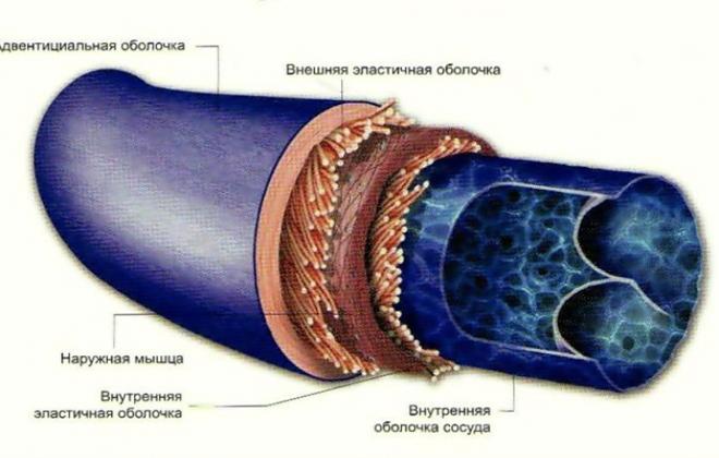 Воспалительное заболевание вен