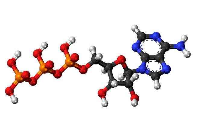 Аденозинтрифосфат формула
