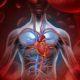 Что значит понижена средняя концентрация гемоглобина в эритроците крови (МСНС)