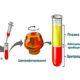 Что такое гематокрит в анализе крови и норма у женщин по возрасту (таблица)