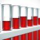 Что значат повышено содержание лейкоцитов в анализе крови