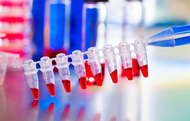 Общий анализ крови соэ норма у детей