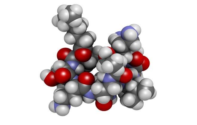 Фолликулостимулирующий (ФСГ) и лютеинизирующий (ЛГ) гормон
