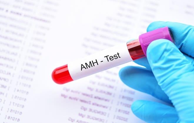 Норма гормона АМГ в крови для ЭКО