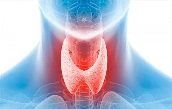 Сдача гормонов щитовидной железы